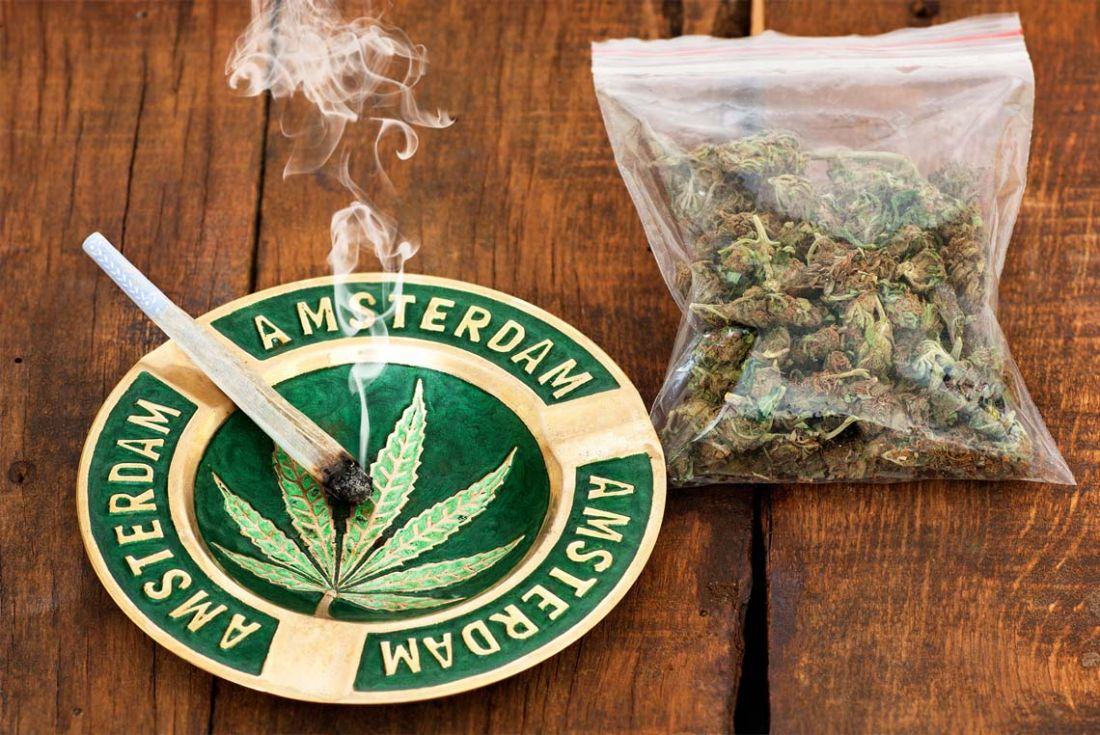 Image result for Cannabis Laws in holland