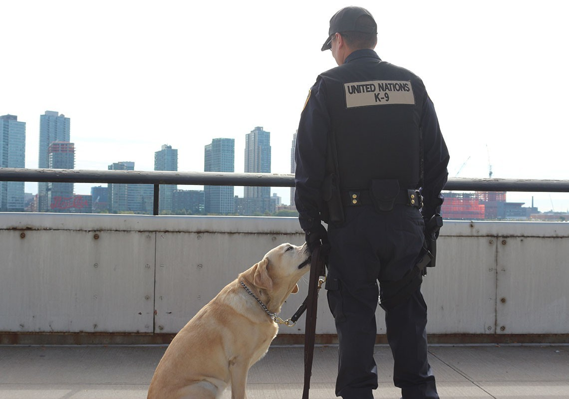 A K-9 Unit Officer at the United Nations Headquart