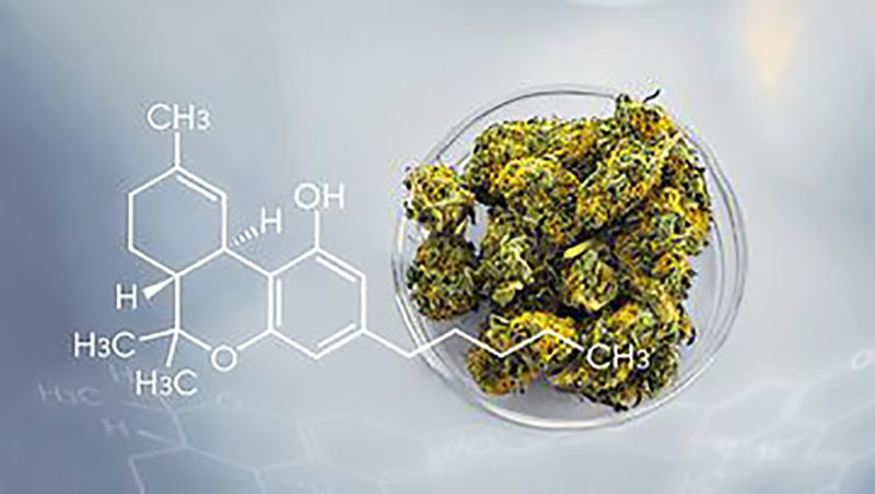 cannabis plant product next to chemical formula