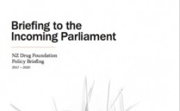 Briefing to the Incoming Parliament 2017-2020